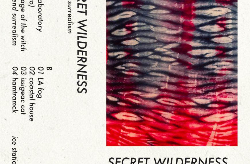 Secret Wilderness – Low End Surrealism
